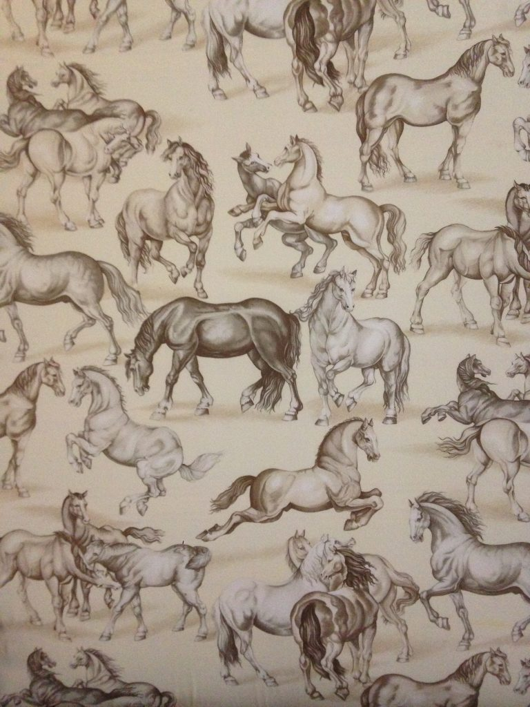 our favourites wild horses